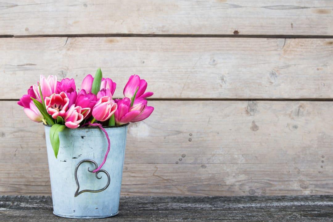 Tuplen in Shabby Vase, Shabby-Chic
