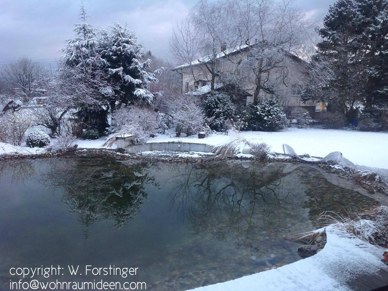 Schwimmteich im Winter