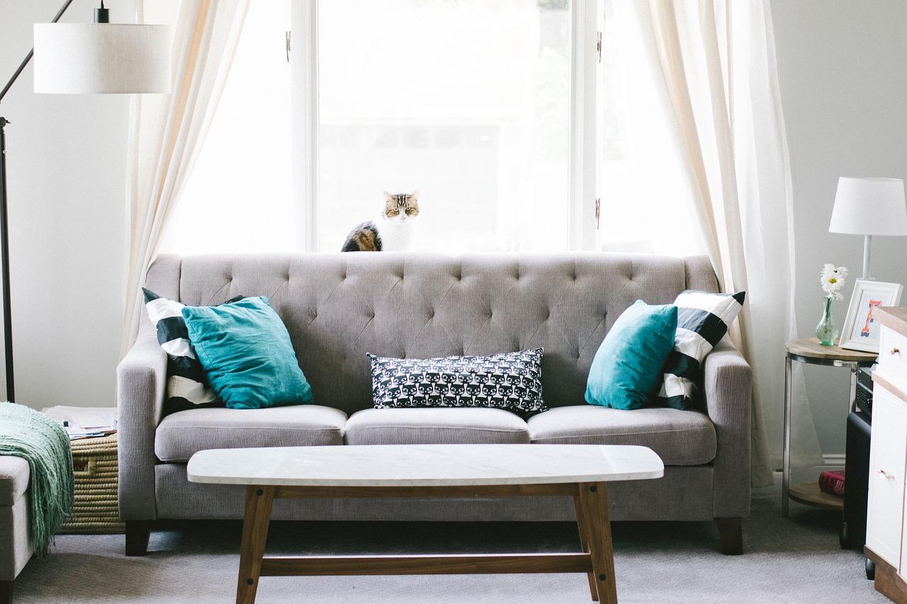 Schönes graues Sofa mit bunten Kissen, Dekostoffe finden