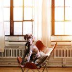 Schicke Designermöbel einfach gebraucht kaufen