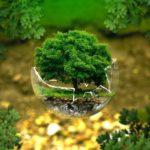 Nachhaltige Möbel und mehr shoppen bei memolife